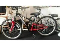 2 apollo bikes for sale