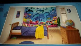 DULUX Complete Decoration for Children's Bedroom. Sea Adventure Mural and all Paint needed.