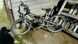 Bike - Tornado XL