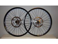 """26"""" Downhill wheels built with DT Swiss 350 Hubs and Mavic 325 Disc and Sram wavey 200mm discs"""