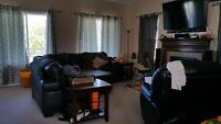 looking for respectful roommate