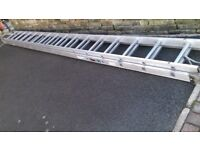YOUNGMAN EXTENSION LADDERS.