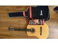 Lauren 50n-NT Acoustic Guitar
