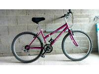 "Womens MTB 26"" mountain bike"