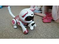 Pink teksta cat