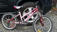 Vélo de fille 20 pouces