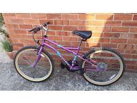 "14"" mountain bike for sale"
