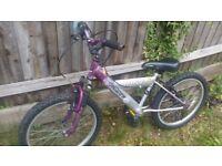 Probike Minx 20' Wheels Bike
