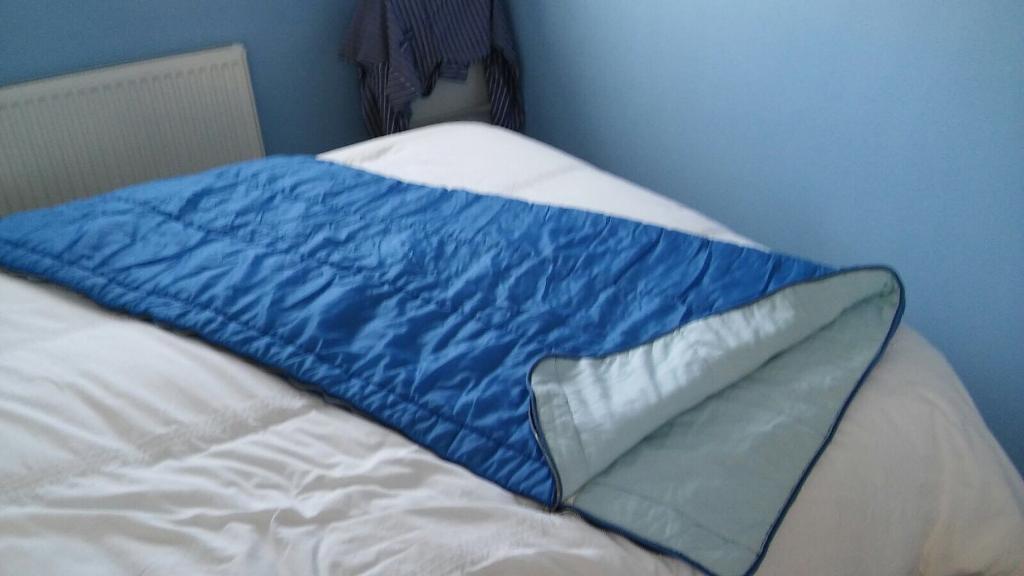 Blue Adult Sleeping Bag