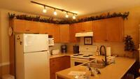 Great 1 Bdrm Ski In/Ski Out - Kettle View Rd