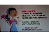 BUSY BEE'S CLEANING / IRONING AND GENERAL HOUSE KEEPING SERVICES