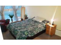 Double room in crystal palace