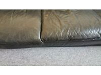 FREE - Leather Sofa