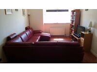 Natuzzi Italian Leather Corner Sofa With Chaise (Red)