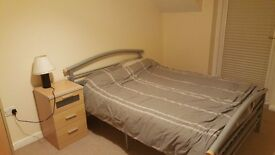 Penthouse Spare Room to rent!