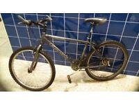 Carerra Subway 24 geared 18 inch Mountain Bike