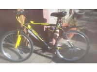 Bike AVIGO 26'' BETA (bought in march)
