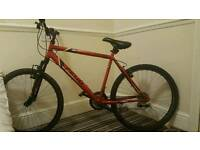 Apollo feud mountain bike