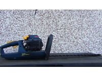 petrol hedge trimmer 24cc + electric hedge trimmer for extra £30