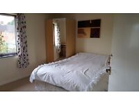 Double and Single Rooms To Let