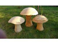 Mushroom family