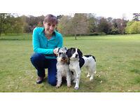 Mandy Parker Dog Walker & Pet Care