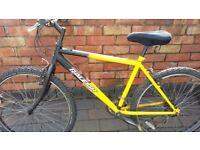 Nice Reliable Raleigh Bike