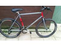 Gents Specialized Mountain Bike