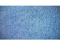 blue carpet and underlay 12 x 8 1/2 feet & grips grippers 5 pounds for all smoke free pet free home