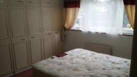 1 Double bed + 2 Single available to rent now in Hatfield