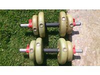 York barbell dumbells
