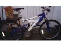 sarcen mountain bike