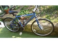ladies saracen ultra light,21 speed road/hybrid bike,puncture proof tyres, just been serviced