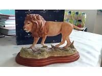 Lion border fine art for sale