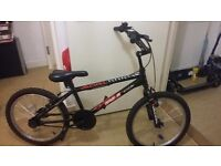 British Eagle Jackal race series boys bike
