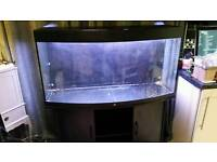 4ft jewel 260 vision tank and stand