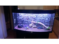 VERY GOOD CONDITIONS 4FT JUWEL VISION BOW FRONTED FISH TANK AND STAN FOR SALE