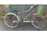 Terrano advantage hybrid bike