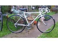 "retro raleigh boys 19"" frame 5 speed project needs TLC"