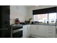 Spacious two bed flat fully furnished on ground floor near beautiful park and lake