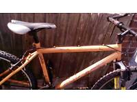 Adults bikes