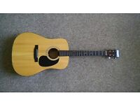 Recording King RD-316 Acoustic Guitar - AAA Adirondack solid top!