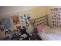 Single room city centre from May