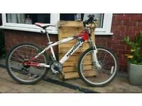 Child's mountain bike