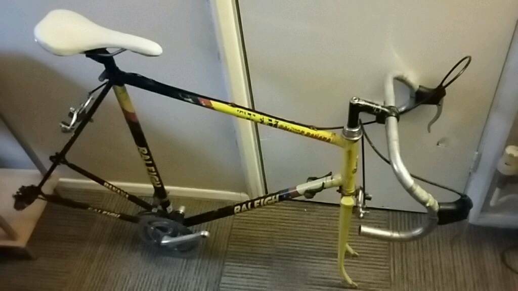 Raleigh Team Banana frame