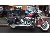 Harley Davidson Softail Classic Immaculate Condition