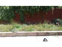 Top garden soil for free collection