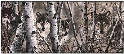 Wolves Peering Through the Forest Sure Strip Wallpaper Border WD4170B