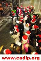 Volunteer at Christmas and New Year in Iceland