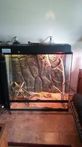 Large Lizard or Snake Tank for Sale
